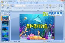 中班主题活动《各种各样的鱼》PPT课件下载
