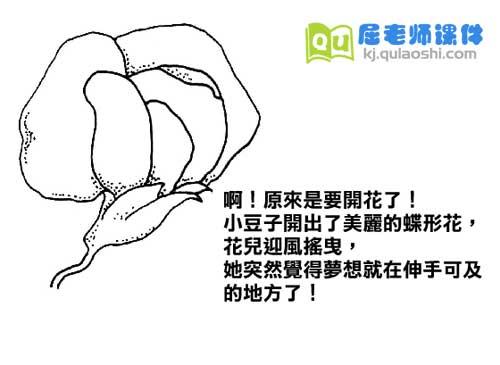 学前班科学《植物的一生》FLASH动画课件3