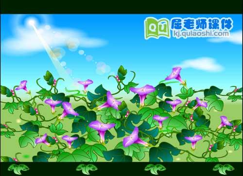 大班语言课件《牵牛花》FLASH动画课件2