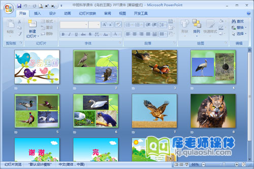 中班科学课件《鸟的王国》PPT课件2
