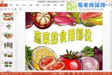 大班健康课件《蔬菜的食用部位》PPT课件