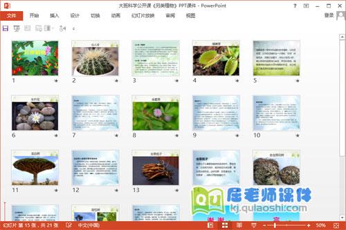 大班科学公开课《另类植物》PPT课件2