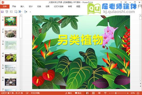 大班科学公开课《另类植物》PPT课件1