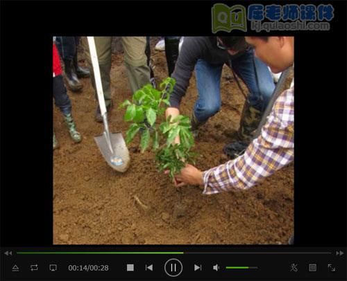 《栽树》视频