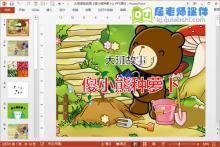 大班语言故事《傻小熊种萝卜》PPT课件下载