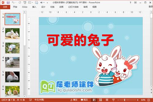 小班科学课件《可爱的兔子》PPT课件