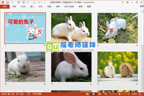 小班科学课件《可爱的兔子》PPT课件2