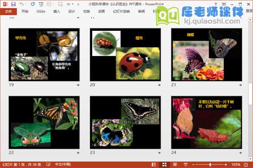 小班科学课件《认识昆虫》PPT课件5