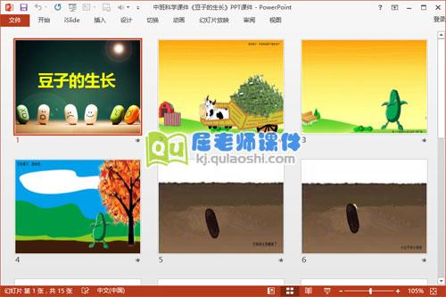 中班科学课件《豆子的生长》PPT课件2