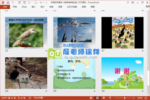 中班科学课件《各种各样的鸟》PPT课件6