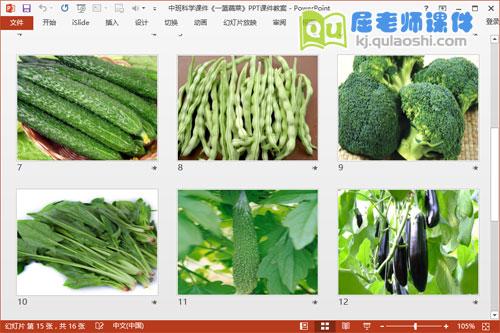 中班科学课件《一篮蔬菜》PPT课件教案3