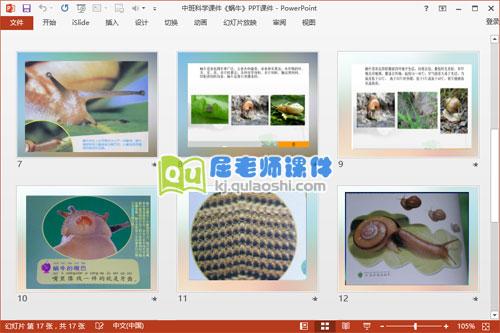 中班科学课件《蜗牛》PPT课件3