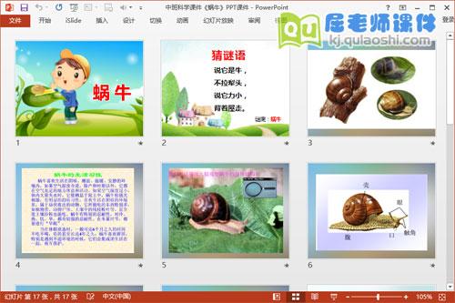 中班科学课件《蜗牛》PPT课件2