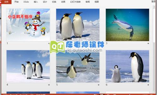中班美术课件《小企鹅不怕冷》PPT课件2