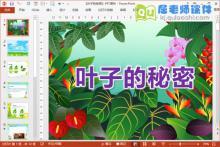 小班主题课件《叶子的秘密》PPT课件教案图片