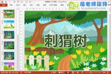 大班语言课件《刺猬树》PPT课件教案音效图片下载