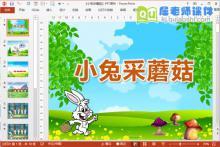 小班科学课件《小兔采蘑菇》PPT课件教案教具图片