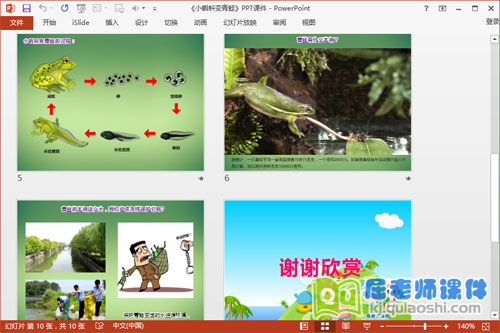 中班科学课件《小蝌蚪变青蛙》PPT课件教案学具视频2