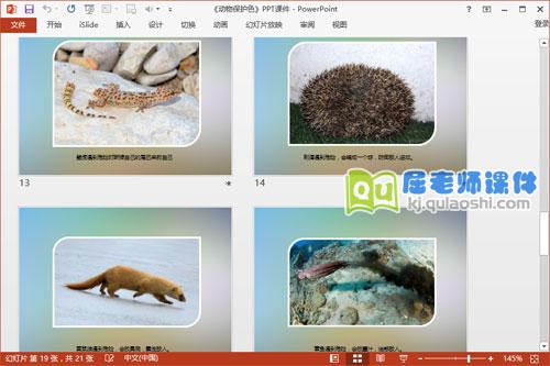 大班科学课件《动物保护色》PPT课件教案图片5