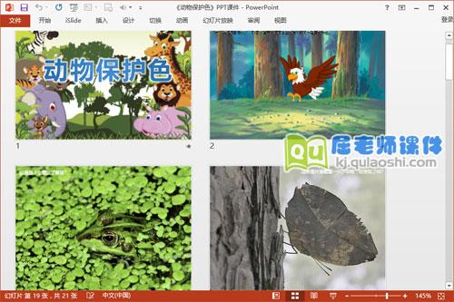 大班科学课件《动物保护色》PPT课件教案图片2