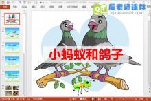 中班社会课件《小蚂蚁和鸽子》PPT课件