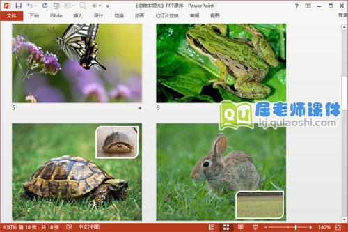 大班科学课件《动物本领大》PPT课件教案图片学具3