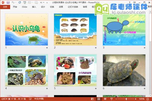 小班科学课件《认识小乌龟》PPT课件2