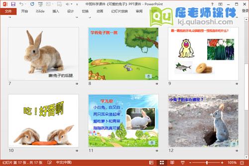 中班科学课件《可爱的兔子》PPT课件3