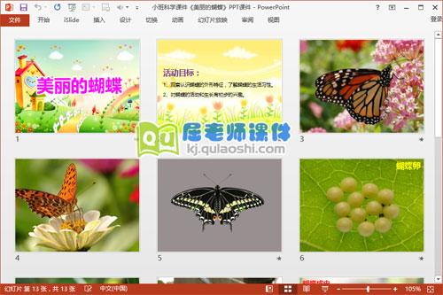小班科学课件《美丽的蝴蝶》PPT课件2