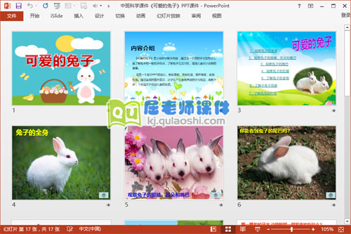中班科学课件《可爱的兔子》PPT课件2