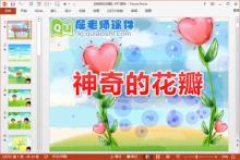 大班社会公开课课件《神奇的花瓣》PPT课件教案音效图片下载